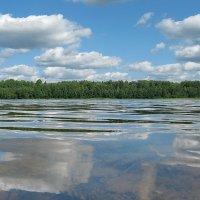 Перед носом озеро. :: Владимир Гилясев