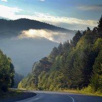 Утренний туман :: Лариса Корсакова