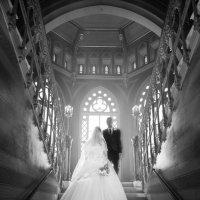 свадебный шут в голландии :: Stanislav Pokhodilo
