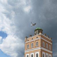 водонапорная башня :: Сергей Цветков