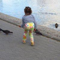 Она всего лишь хотела погладить голубя :: Андрей Лукьянов