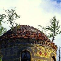 Купол церкви :: Валерий Талашов
