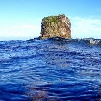 островок :: Ingwar
