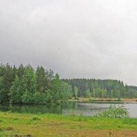 На озере :: alemigun