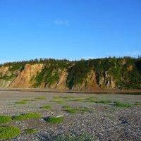 Суровая природа Шантарских островов. Остров Большой Шантар :: Vladimir 070549