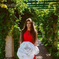 Белое на красном :: Даша Кириллова