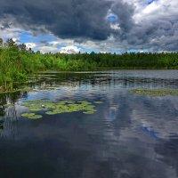 Озеро.Скользящий свет :: Валерий Талашов