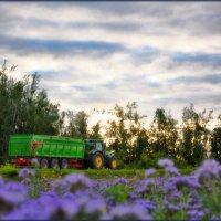 ЗАРИСОВКА В ДОРОГЕ./день города в деревне/ :: Юрий Ефимов