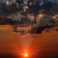Лучи закатного солнца. :: Анатолий Клепешнёв