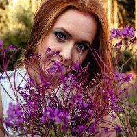 Цветочное лето :: Вероника Просекова