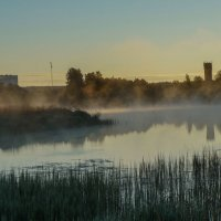 Утренний туман :: Анатолий