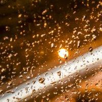 Rain :: Андрей Прохоревич