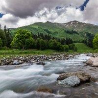 В горах Абхазии :: Александр Хорошилов