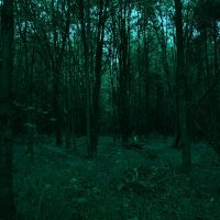 Тайна, покрытая мраком. :: Екатерина Дроздова