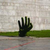 Рука :: Eugen Pracht
