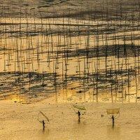 Пляж Песчаная отмель Сяпу :: chinaguide Ся