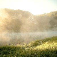 Утро, туман :: Дмитрий Учителев