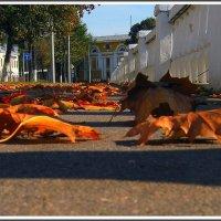 Осени нашествие :: Vlad Седов