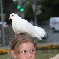 Сейчас доем и полетим...... :: Tatiana Markova
