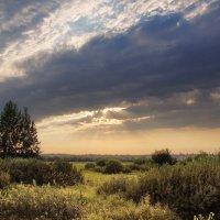 Вечер в лугах :: Виктор Четошников