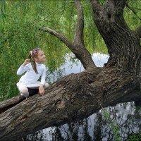 На удивительном дереве :: Нина Корешкова