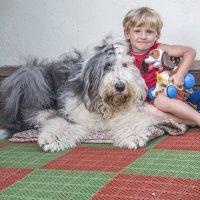 мальчик с собачками :: Лариса Батурова