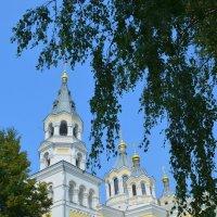 Преображенский собор в Житомире :: Ростислав