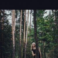 Фотосессия в лесу :: Ирина Артемьева