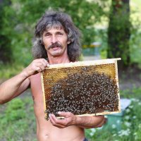 Пчеловод :: Александр Александров