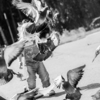 В компании голубей))) :: Юлия Клемешова