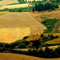 ЭТО - ТОСКАНА, ДЕТКА )) BY IRAMASHURA 2015 © TOSCANA, TUSCANY, 23-08-2015 :: ira mashura