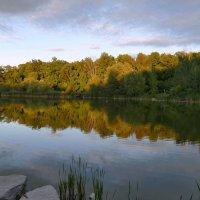 На том берегу еще солнце (и пикник с рыбалкой...) :: Юрий Поляков