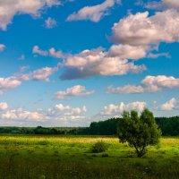 по дороге с облаками :: Евгений .