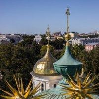 Взгляд с высоты :: Elena Ignatova