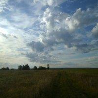 Дорога в исчезнувшую деревню. :: Николай Туркин