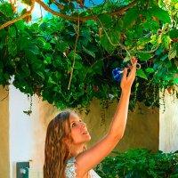 Лето :: Julia Baraulina