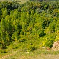 Борнуковская пещера. Вид с высоты 40 м :: Роман Царев