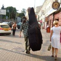 ..ну почему я не согласился на скрипочку ?! :: Ольга Заметалова
