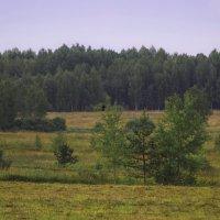 Кириши :: Рома Григорьев