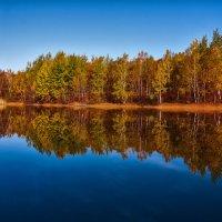 отражение. :: Андрей Фролов