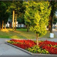 Кутузовский сквер. :: Fededuard Винтанюк