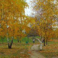 Осенняя дорожка. :: Александр Атаулин