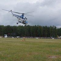 Вертолетный спорт. Слалом. :: Олег Чернов