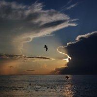 Когда на море закат :: Виолетта