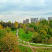 Осень в Раменках. :: Александр Атаулин