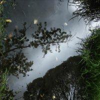 Осенние отражения :: Татьяна Грищук