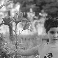 Дина с лилиями :: Виктория