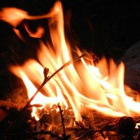 Огонь :: Ирина Волк