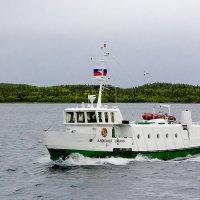 Студеное море :: Александр Силинский