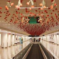 В аэропорту Брюсселя :: Олег